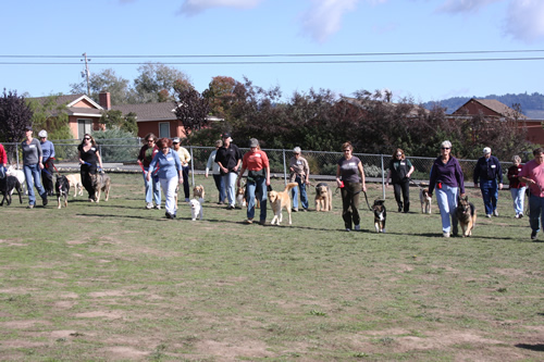 dogs-n-people3