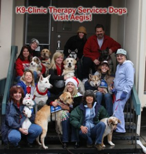 therapy-service-visit